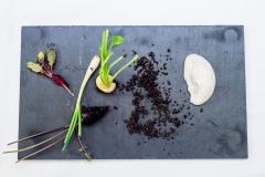 fotos-de-Gastronomia-en-madrid_008