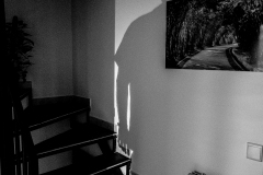 Serie-Pulsion_foto_Miguel-A_-Munoz-Romero_026